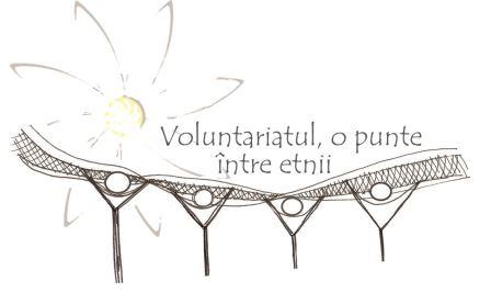 Logo final Voluntariatul, o punte