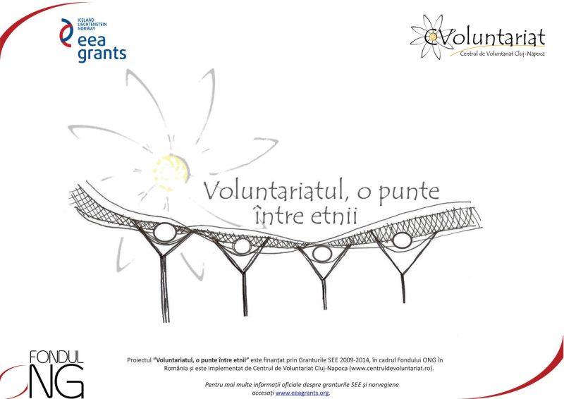 voluntariat_punte_img