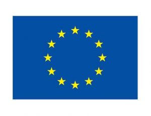 Prioritatile-tale-pentru-Europa